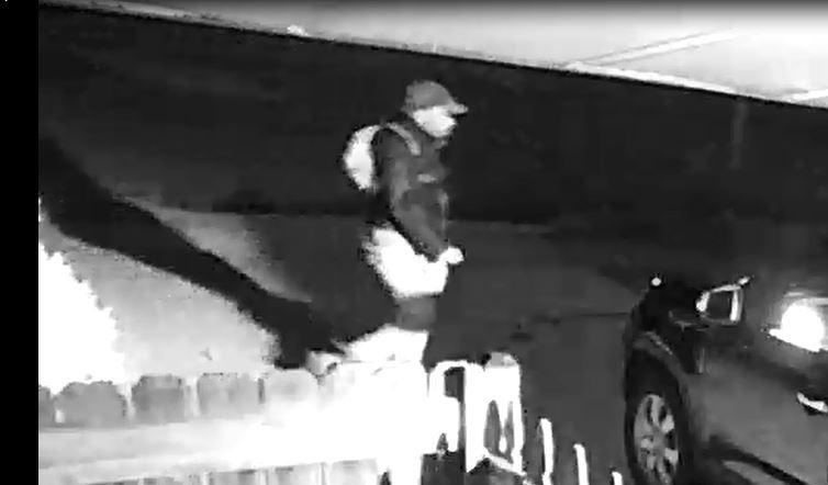 16-94358 theft suspect snip 1.JPG